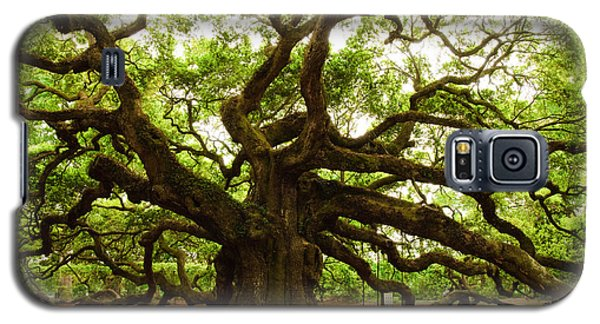 Angel Oak Tree 2009 Galaxy S5 Case