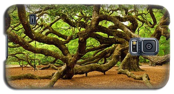 Angel Oak Tree Branches Galaxy S5 Case