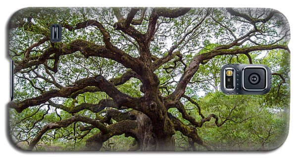Galaxy S5 Case featuring the photograph Angel Oak Tree by Dale Powell