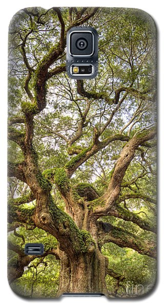 Angel Oak Tree Johns Island Sc Galaxy S5 Case