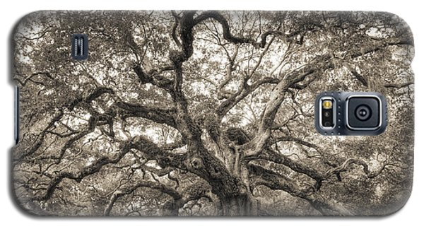 Angel Oak Tree Of Life Sepia Galaxy S5 Case