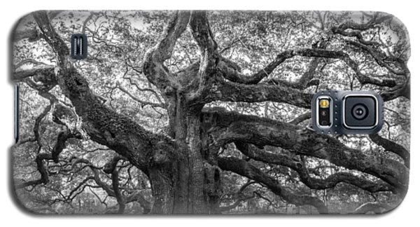 Galaxy S5 Case featuring the photograph Angel Oak Tree by Patricia Schaefer