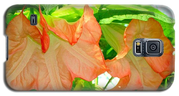 Galaxy S5 Case featuring the photograph Angel Trumpet  by Kay Gilley