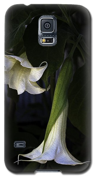 Galaxy S5 Case featuring the photograph Angel Trumpet by Wayne Meyer