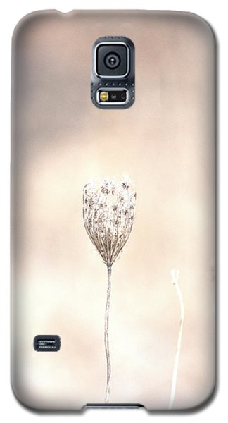 Galaxy S5 Case featuring the photograph Angel's Touch by The Art Of Marilyn Ridoutt-Greene