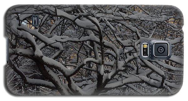 Galaxy S5 Case featuring the photograph Angular Tree With Snow by Winifred Butler
