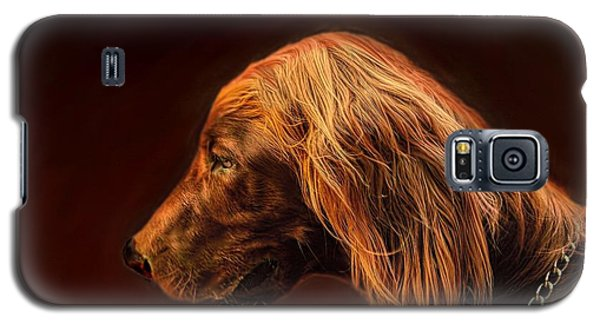 Galaxy S5 Case featuring the photograph Angus Irish Red Setter by Wallaroo Images