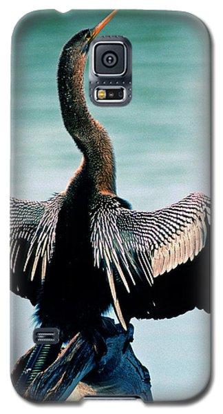 Anhinga Anhinga Anhinga Drying Feathers Galaxy S5 Case