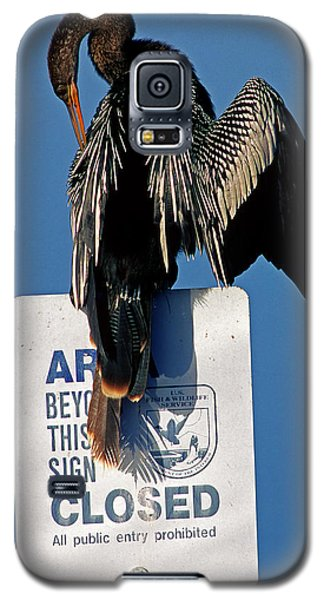 Anhinga Perched On A Signpost Galaxy S5 Case