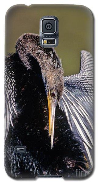 Anhinga Preens Galaxy S5 Case by Martha Marks