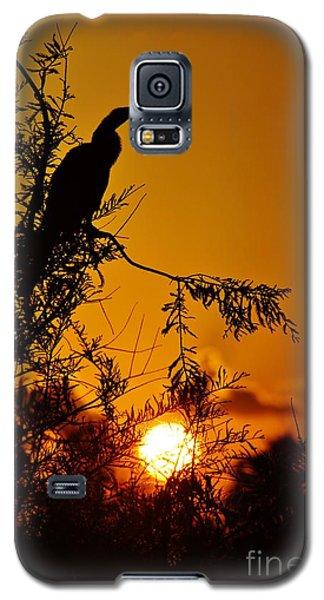 Anhinga Sunset Galaxy S5 Case