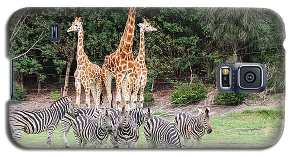 Animal Kingdom I Galaxy S5 Case