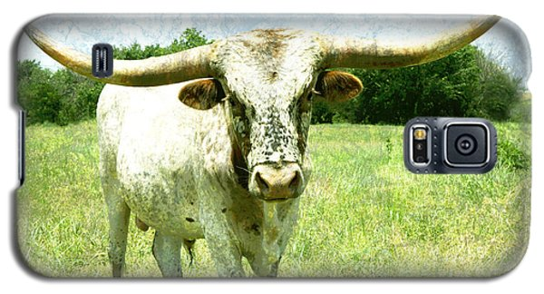 animals - cows -Longhorn in Summer Pasture Galaxy S5 Case by Ann Powell