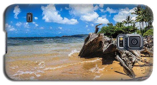 Anini Beach 4 Galaxy S5 Case