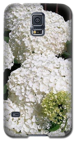 Annabelle Hydrangea  Galaxy S5 Case