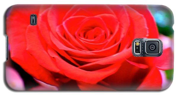 Anniversary Rose Galaxy S5 Case