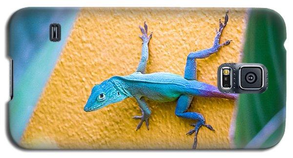 Anole Galaxy S5 Case