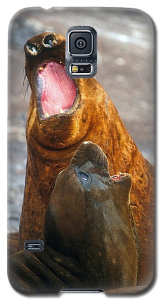 Galaxy S5 Case featuring the photograph Antarctic Elephant Seals by Dennis Cox WorldViews