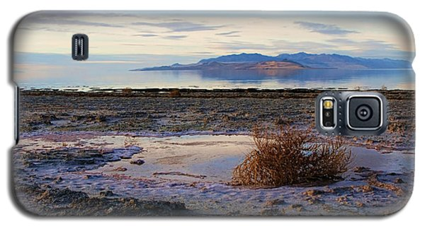 Galaxy S5 Case featuring the photograph Antelope Island - Tumble Weed by Ely Arsha