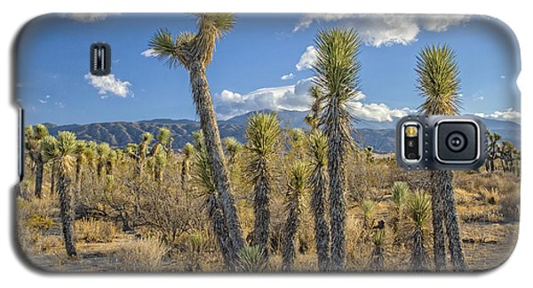 Antelope Valley Joshua Trees 1 Galaxy S5 Case