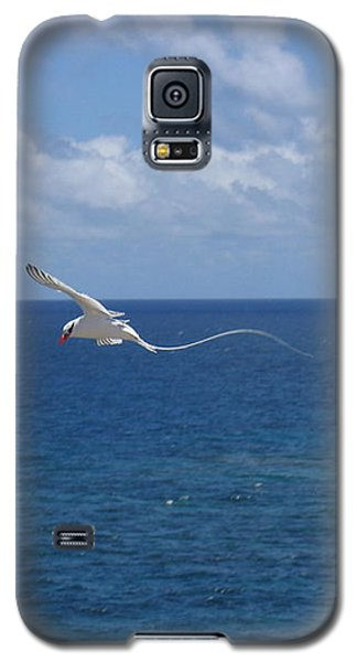 Antigua - In Flight Galaxy S5 Case