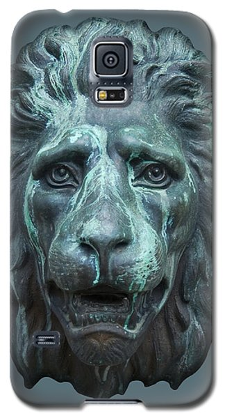 Antique Lion Face In Blue Galaxy S5 Case