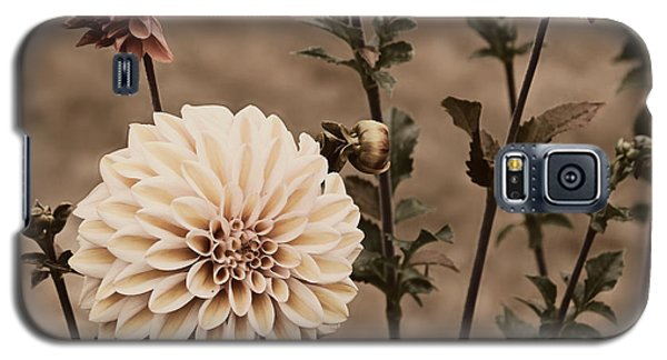 Galaxy S5 Case featuring the photograph Antiqued Dahlias by Jeanette C Landstrom
