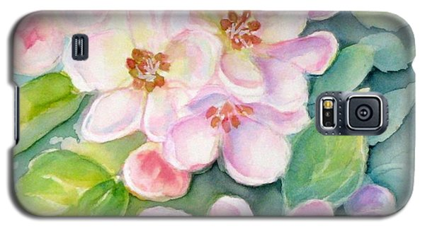 Apple Blossoms 1 Galaxy S5 Case