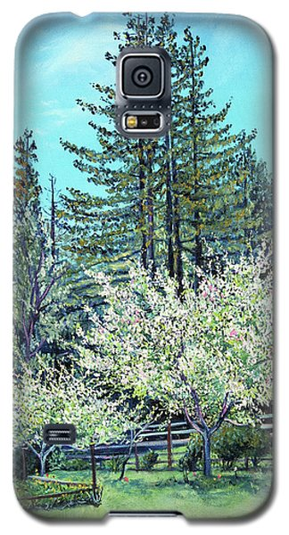 Galaxy S5 Case featuring the painting Apple Blossoms And Redwoods by Asha Carolyn Young