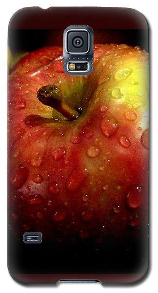 Apple In The Rain Galaxy S5 Case