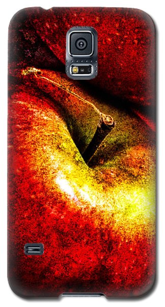 Apples  Galaxy S5 Case by Bob Orsillo