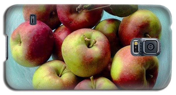 Apples In Blue Bowl Galaxy S5 Case by Brenda Pressnall