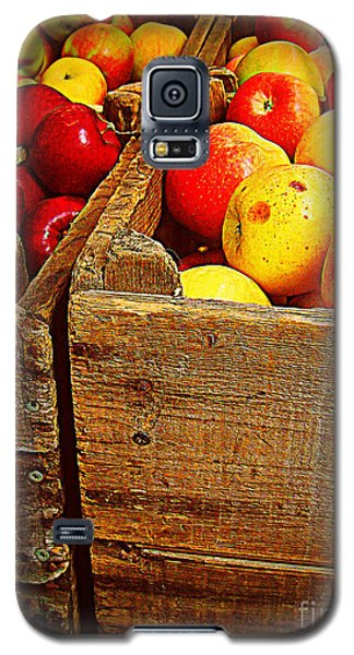 Galaxy S5 Case featuring the photograph Apples In Old Bin by Miriam Danar
