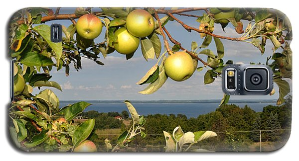 Apples Over Grand Traverse Bay Galaxy S5 Case