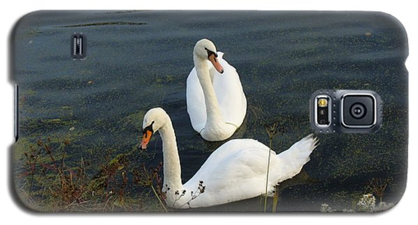Galaxy S5 Case featuring the photograph Appreciation Of Love by Lingfai Leung