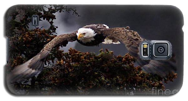 Galaxy S5 Case featuring the photograph Approaching Eagle-signed- by J L Woody Wooden