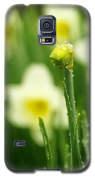 Galaxy S5 Case featuring the photograph April Showers by Joan Davis