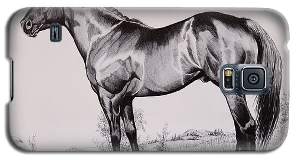 Aqha Stallion Driftwood Galaxy S5 Case