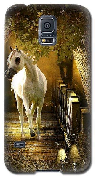 Arabian Dream Galaxy S5 Case