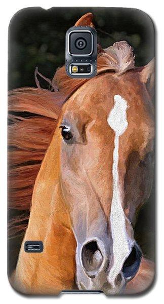 Arabian Gelding Galaxy S5 Case by James Shepherd