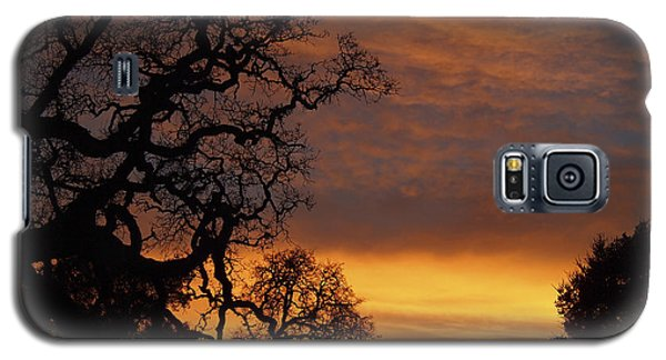 Galaxy S5 Case featuring the photograph Arastradero Open Space Preserve Sunset by Priya Ghose