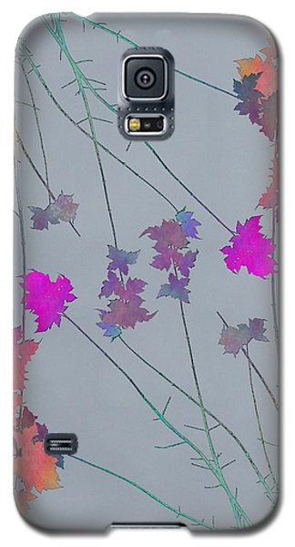 Arbor Autumn Harmony 1 Galaxy S5 Case