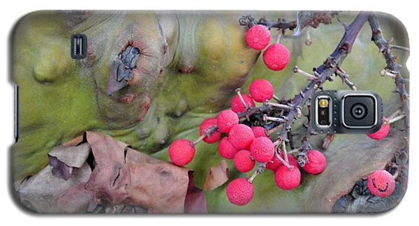 Arbutus Berries Galaxy S5 Case