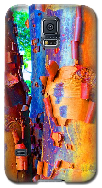 Arbutus Tree Summer Galaxy S5 Case