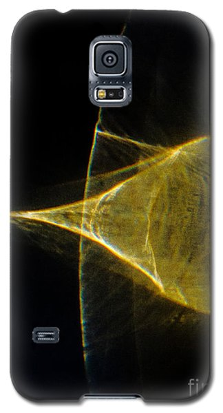 Arching Galaxy S5 Case