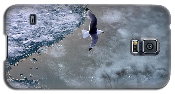 Arctic Flight Galaxy S5 Case