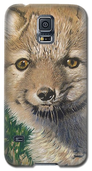 Sold Arctic Fox Galaxy S5 Case