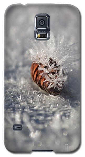 Arctic Pine Cone Porcupine Galaxy S5 Case