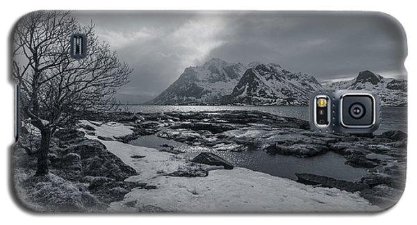 Arctic Spring  Galaxy S5 Case