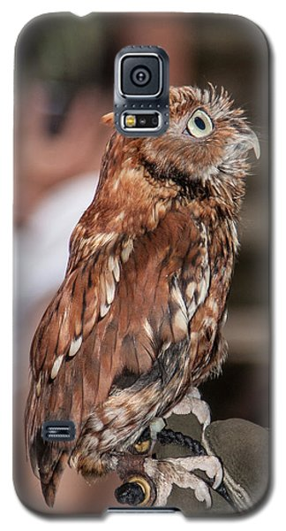 Galaxy S5 Case featuring the photograph Are You My Mother by John Haldane